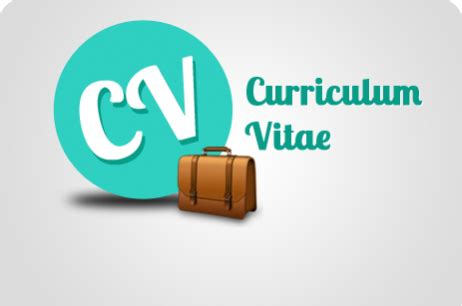 Ejemplos de Currículum Vitae Basico ProfesionalPdf